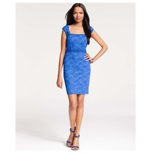 Ann Taylor Corded Lace Sheath Dress